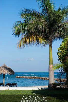 Jamaica+2012-272w.jpg