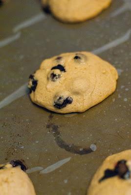 Blueberry+cookies-1.jpg