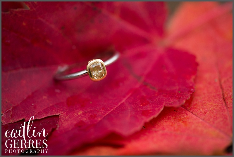 First Landing Park Fall Engagement-134_DSK.jpg