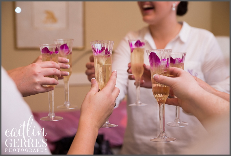 Champagne Wedding Toast-123_DSK.jpg