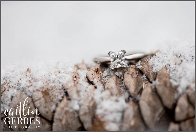 Hampton Roads Engagement Session in the Snow-12_DSK.jpg