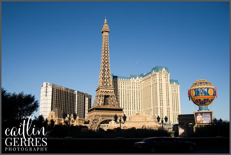 Las Vegas Hotels-125_DSK.jpg
