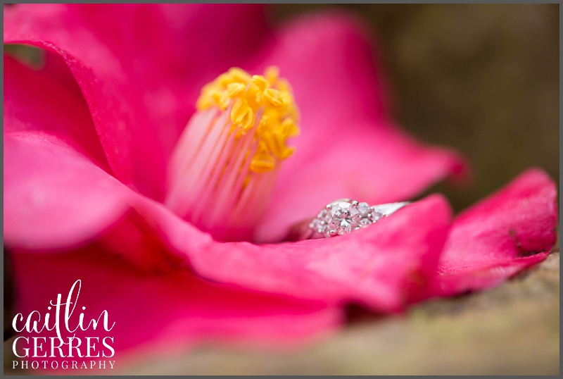 Red Wing Park Engagement Session Photo-106_DSK.jpg