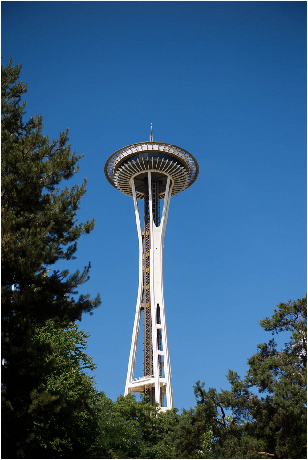 Seattle Vacation-120_WEB.jpg