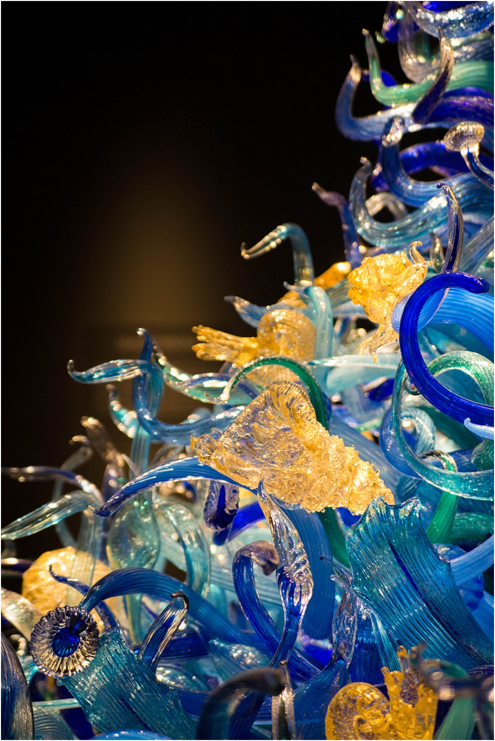 Chihuly Gardens and Glass Seattle-113_WEB.jpg