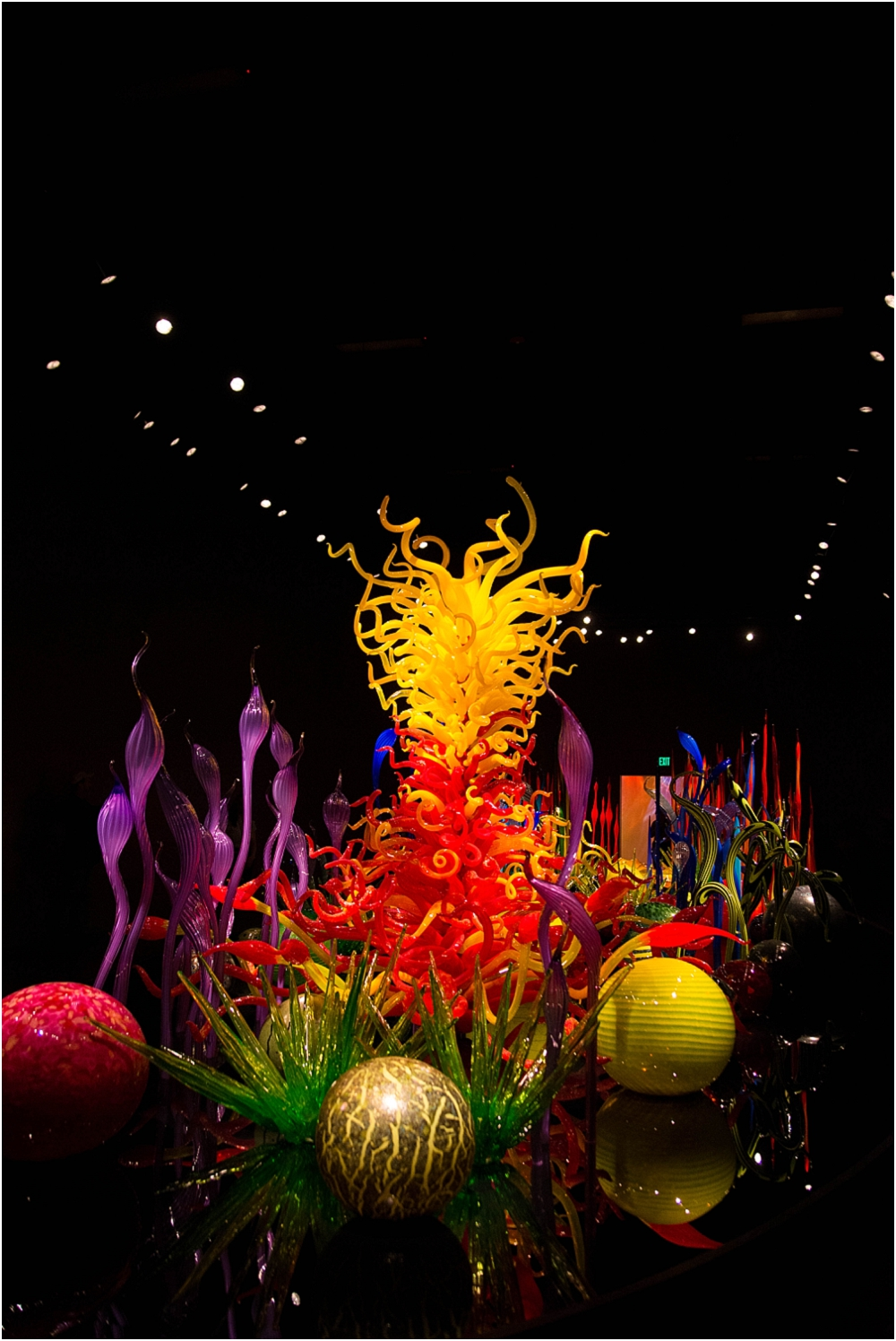Chihuly Gardens and Glass Seattle-127_WEB.jpg