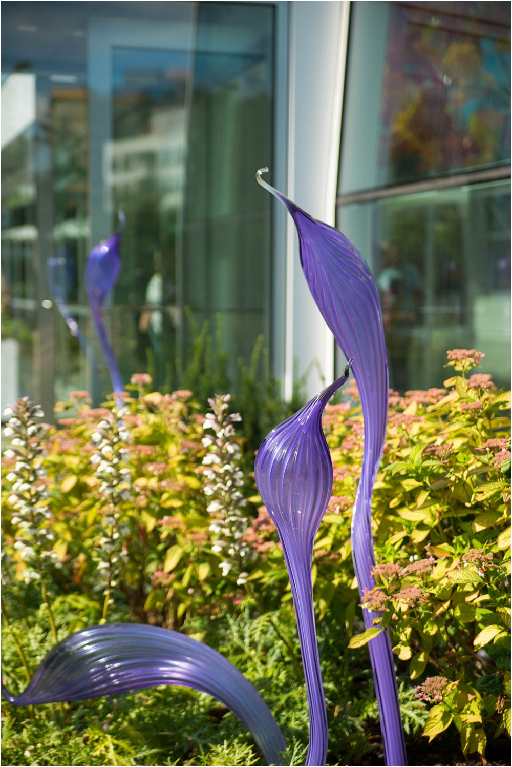 Chihuly Gardens and Glass Seattle-199_WEB.jpg
