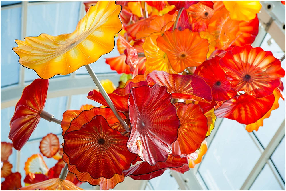 Chihuly Gardens and Glass Seattle-160_WEB.jpg