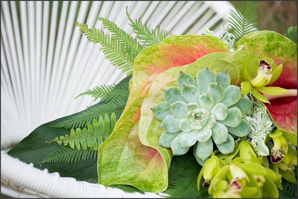 Tropical Styled Shoot-178_WEB.jpg