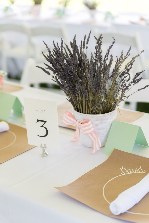 Westover Plantation Wedding Coral Pink Lavender Garden Party-123_WEB.jpg