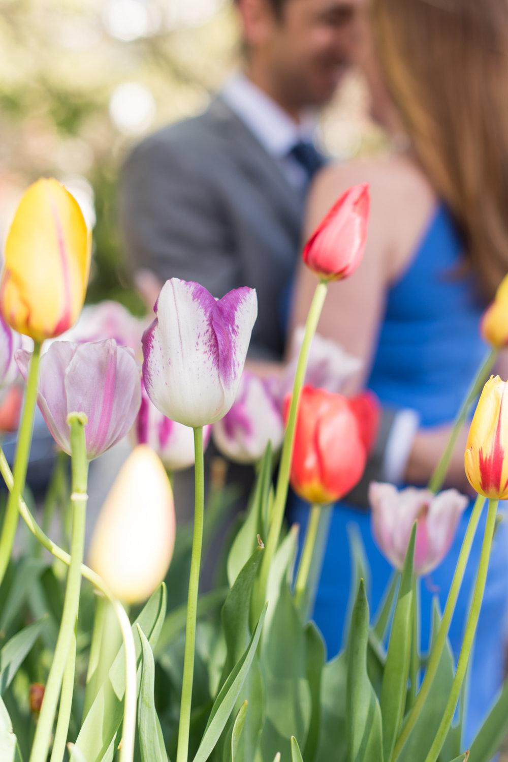 Spring Norfolk Engagement Session-111.jpg