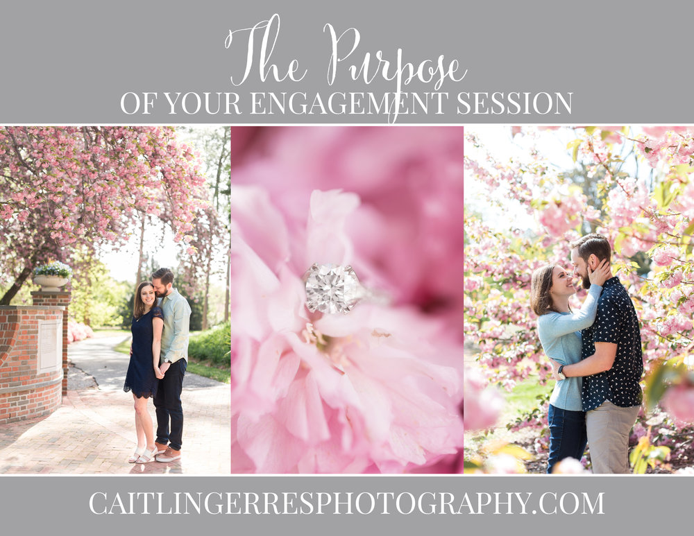 Engagement Session Purpose.jpg