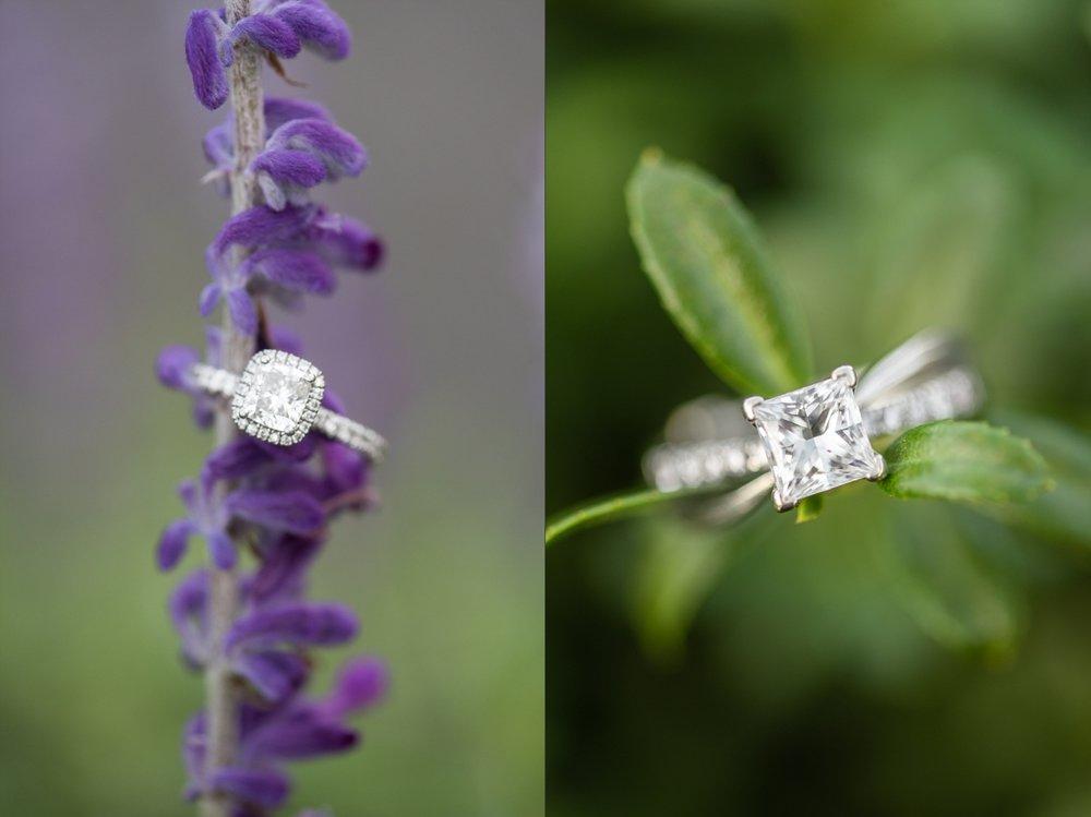 Fall Engagement Session at Norfolk Botanical Garden-102_WEB.jpg
