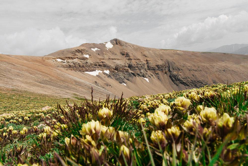 Colorado_14ers__Canon_July17_51.jpg