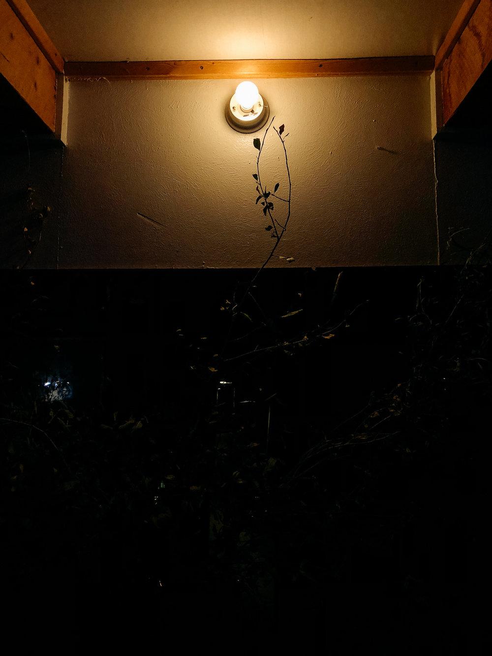 CrestedButte-Vinotok-064.jpg
