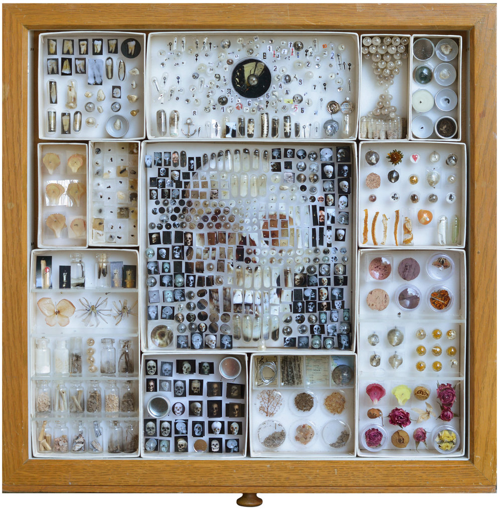 "Specimen v:07, 2017, 20"" x 20"" x 3"" botanical specimens, sand, dirt, bone, shell, violin string, stick matches, cork, butterfly wing, costume jewelry, lemon peel, insects, wax, watch pieces, magnifying lenses, specimen containers, pinning foam, insect pins, capsules, Giclee prints"