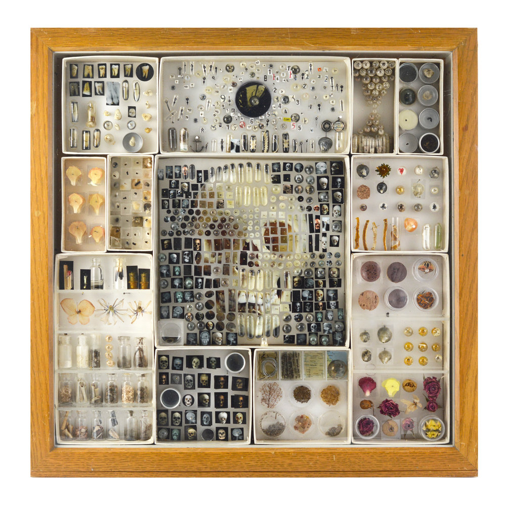 """Specimen v:07, 2017, 20"""" x 20"""" x 3"""" botanical specimens, sand, dirt, bone,shell, violin string, stick matches, cork, butterfly wing, costume jewelry, lemon peel, insects, wax, watch pieces, magnifying lenses, specimen containers, pinning foam, insect pins, capsules, archival prints"""