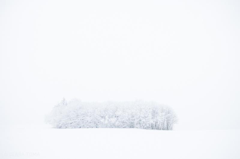 Winter_©ClaraTuma_04.jpg
