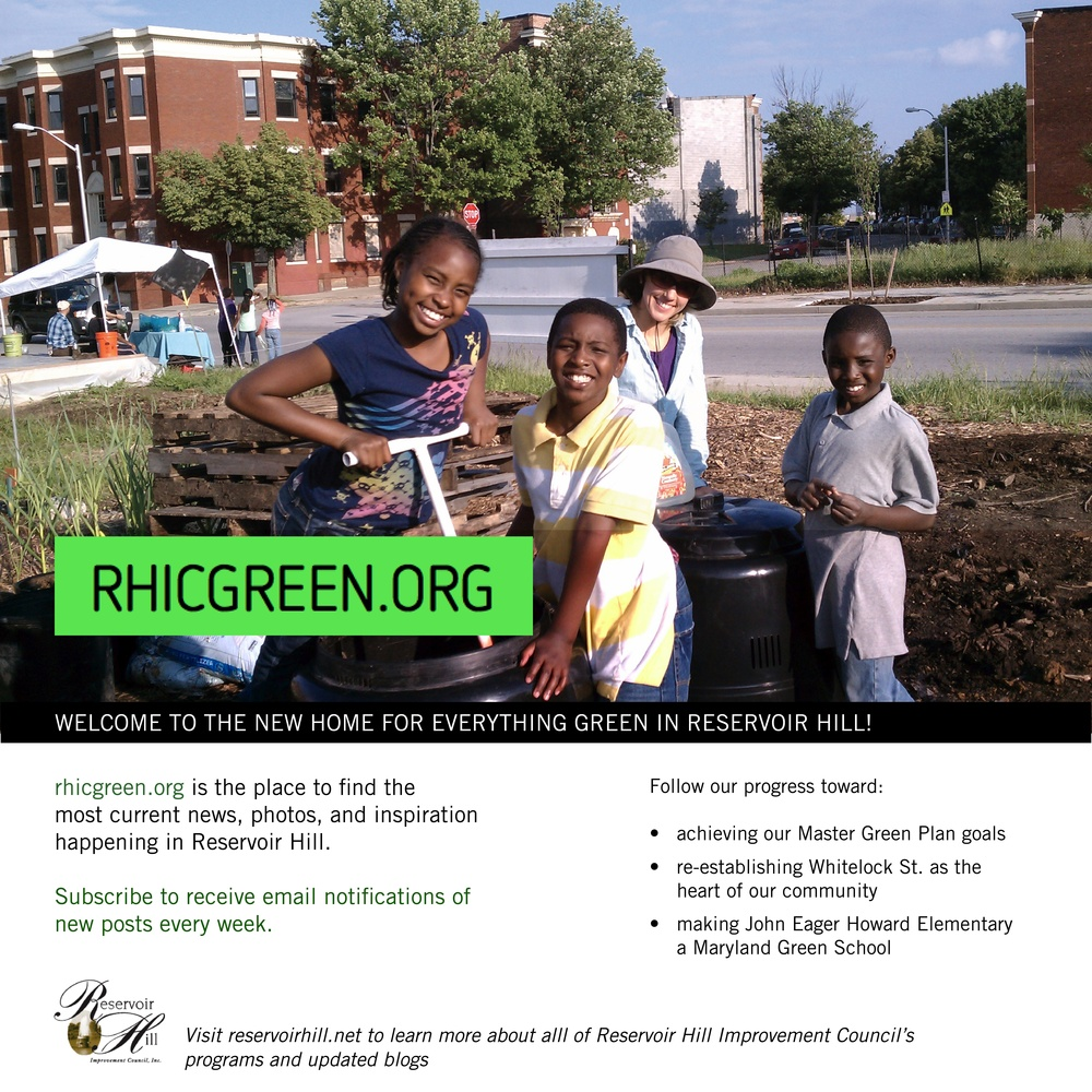 07 15 11 RHIC Green Launch flyer JPEG Hi Res