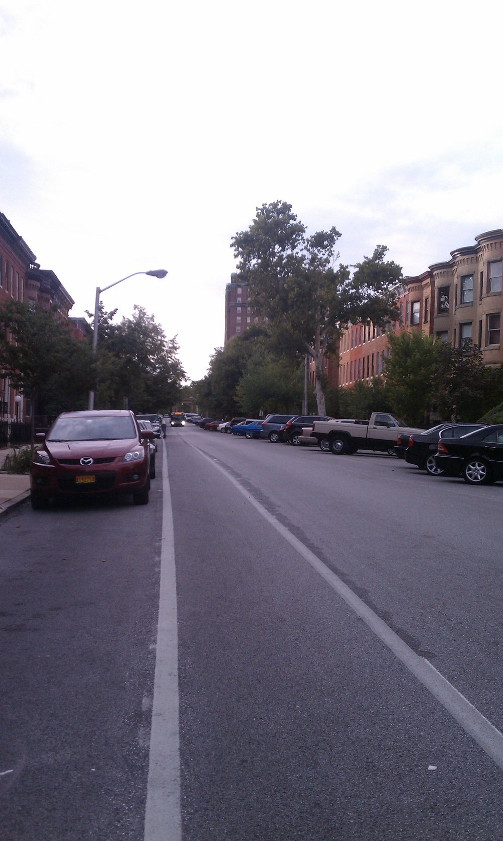 Madison Ave bike lane