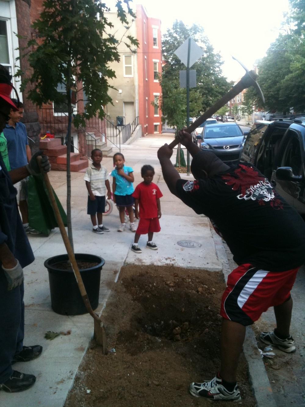 Marcus tree planting