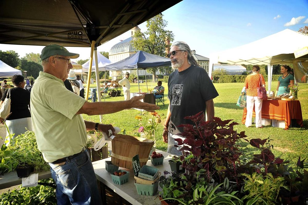 Druid Hill Farmers' Market  -