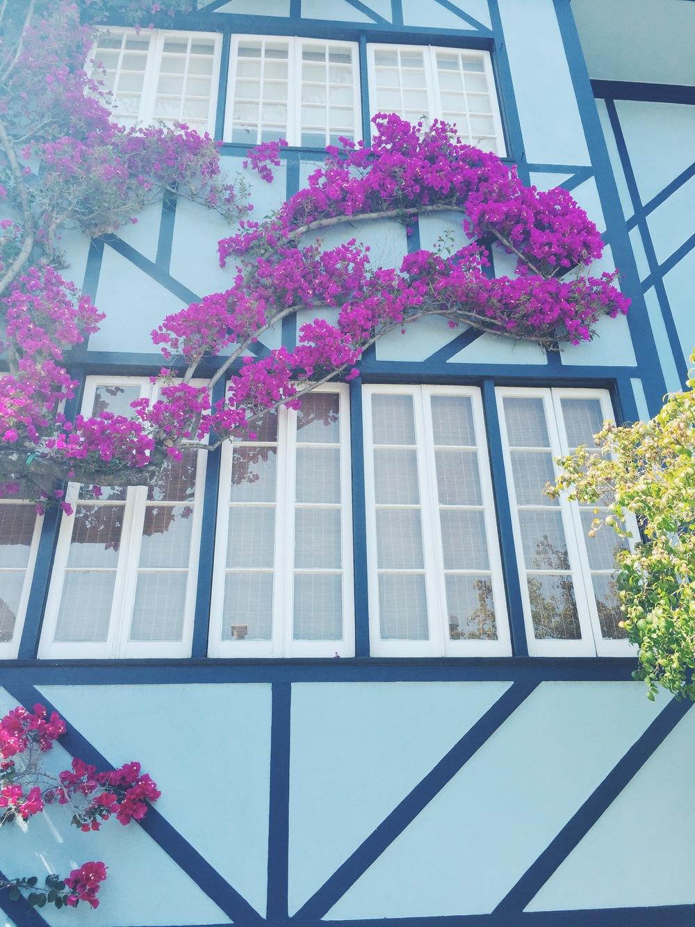Lumbard Street - Flowers 2