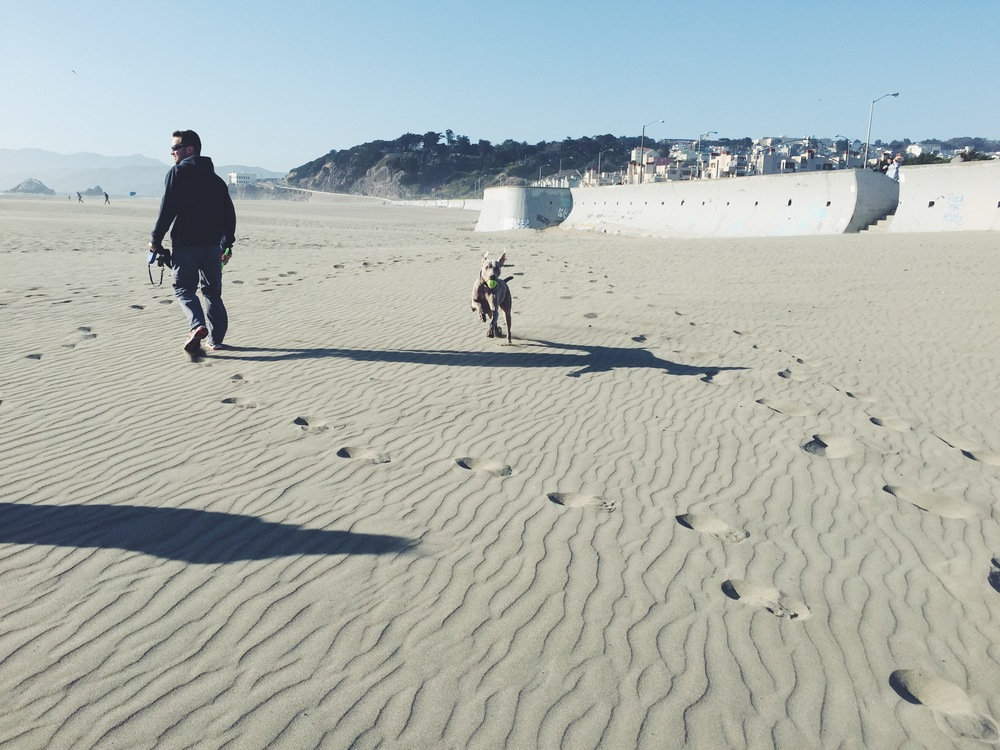 Ocean Beach - Riley 3
