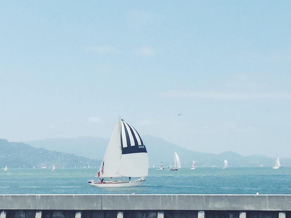 Pier 39 - Sailboat.jpg