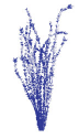 Blue Ocotillo Publishing Austin, Texas Established 2014