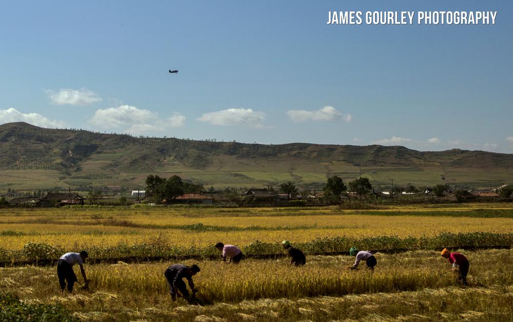Korean People's Army (KPA) Air Force Antonov AN-2 bi-plane flies low over people harvesting corn