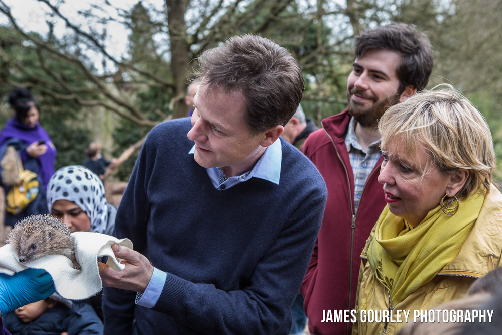 30/03/2015. Solihull, UK. Deputy Prime Minister and leader of the Liberal Democrats Nick Clegg visited Brueton Park nature reserve with Lorely Burt to learn about Hedgehog conservation and to talk about the 'five green laws' in the Lib Dem Manifesto. Photo by James Gourley/Liberal Democrats