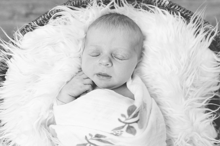 Green Bay Newborn Photos, Wisconsin Family Photographers
