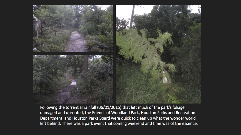 HPB-Woodland Park Cleanup pg.2.jpg