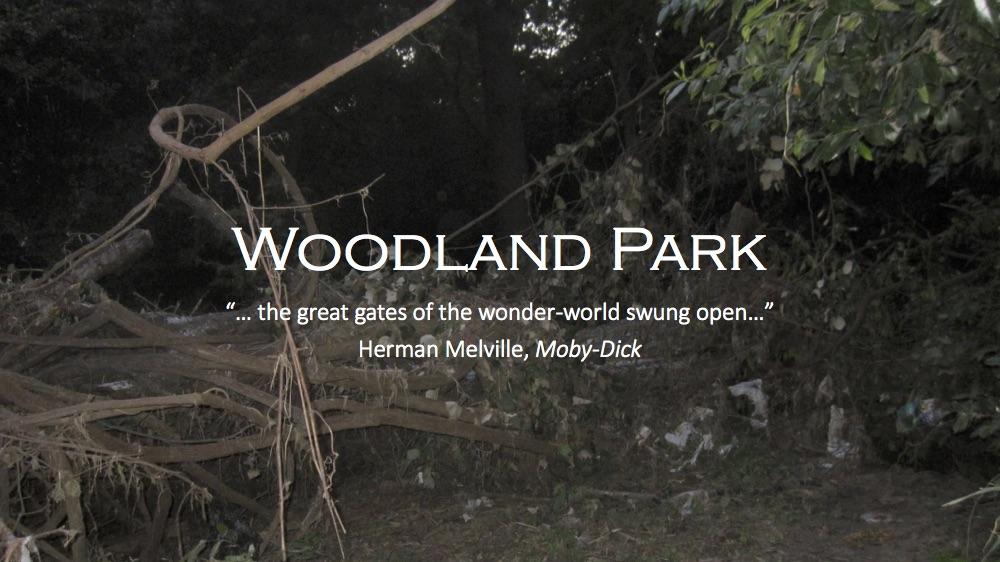 HPB-Woodland Park Cleanup.jpg