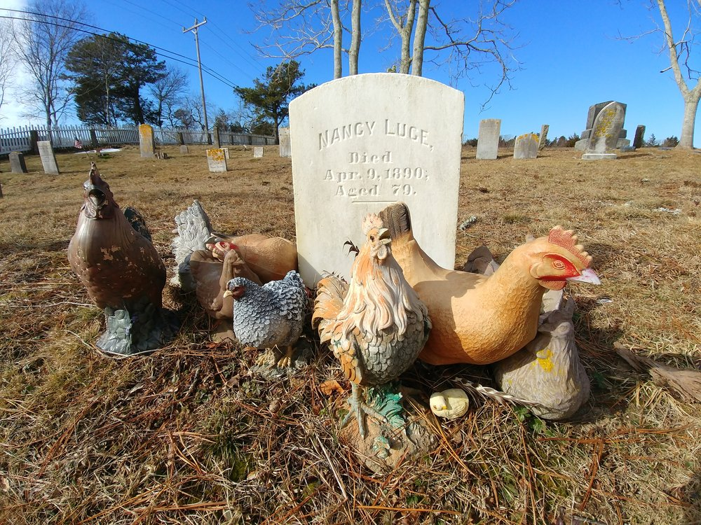 The grave of Nancy Luce, surrounded by the chickens that people have left for her over the years.