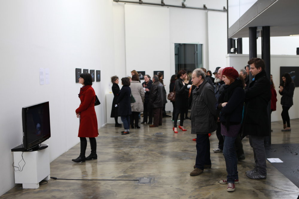 Displacements , installation view, 2011