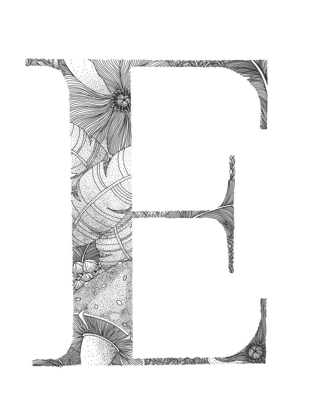 """11"""" x 17"""" - E"""