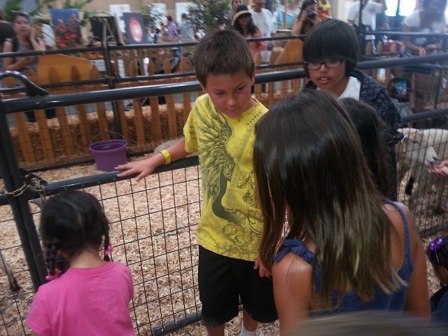 Del Mar Fair Field Trip