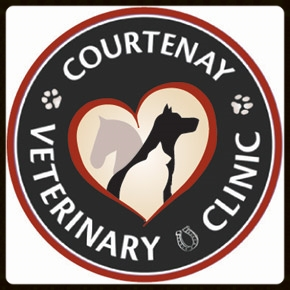 Courtenay Veterinary Clinic