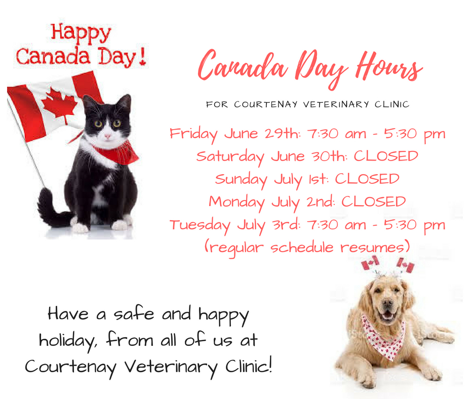 Canada Day Hours.jpg