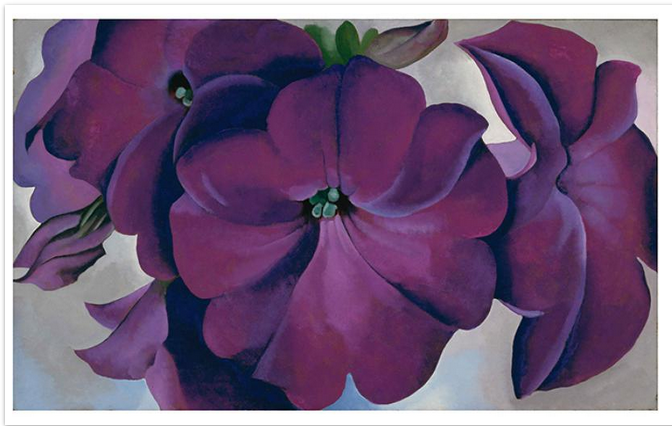 petunias. 1925. oil on board.