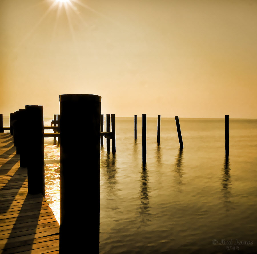 The Sunlit Dock