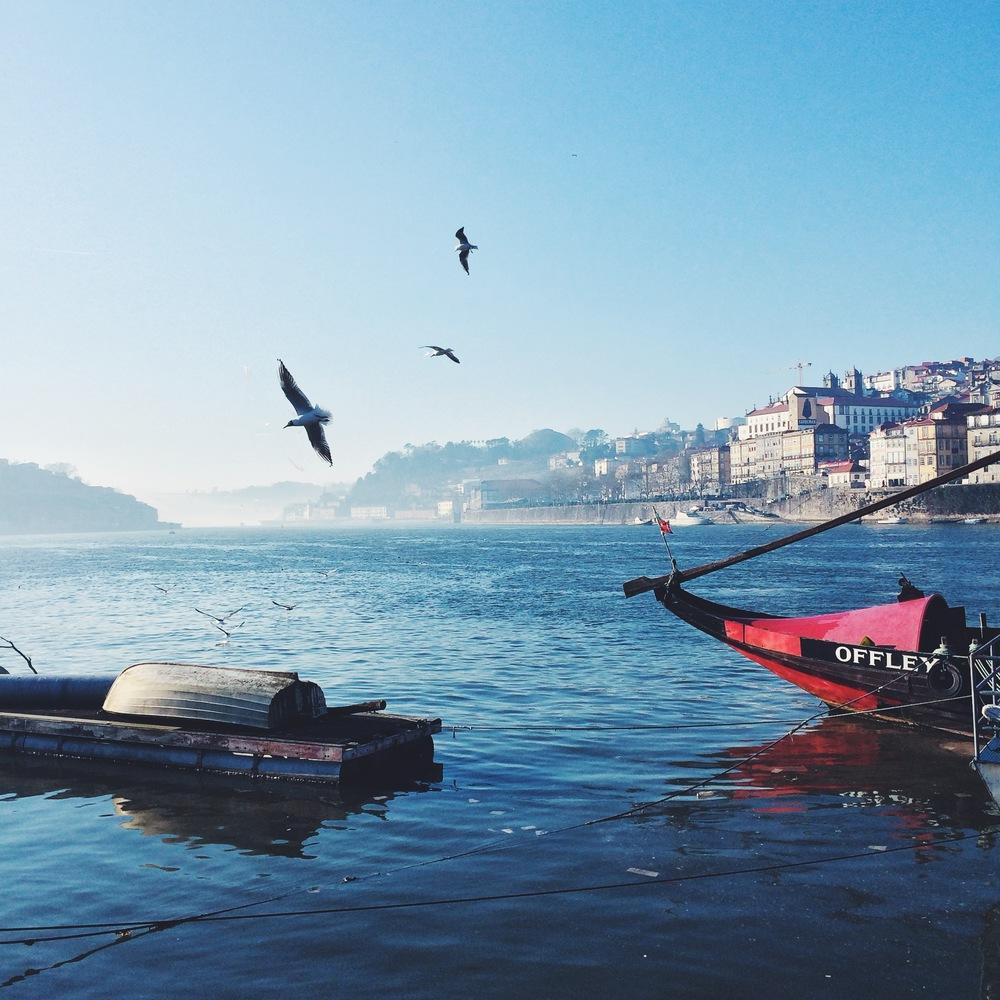 Porto_02_DannyZappa.jpg.jpg