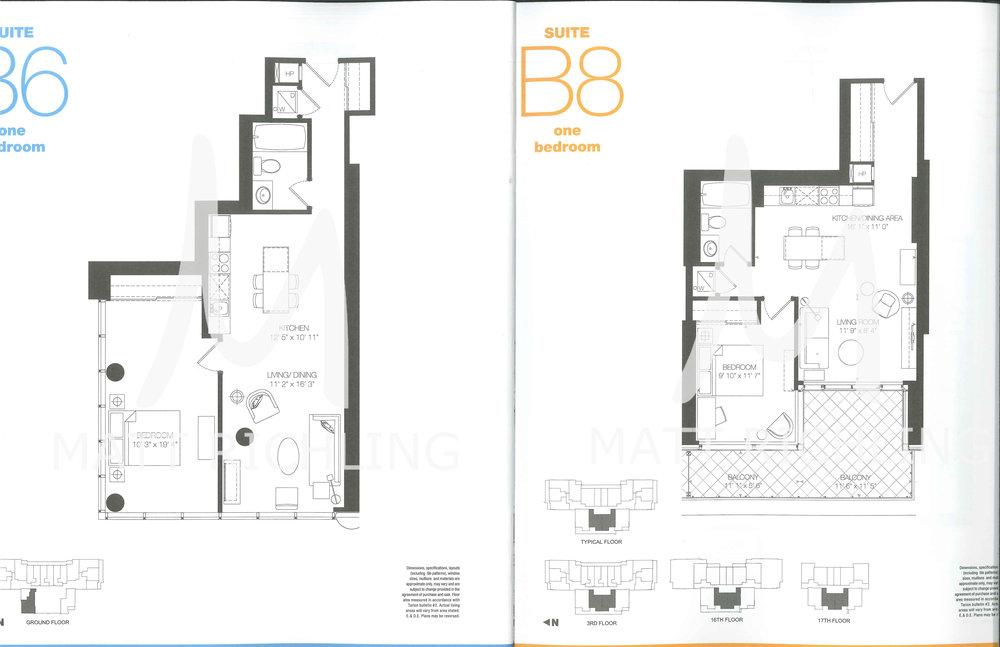 B6-&-B8.jpg