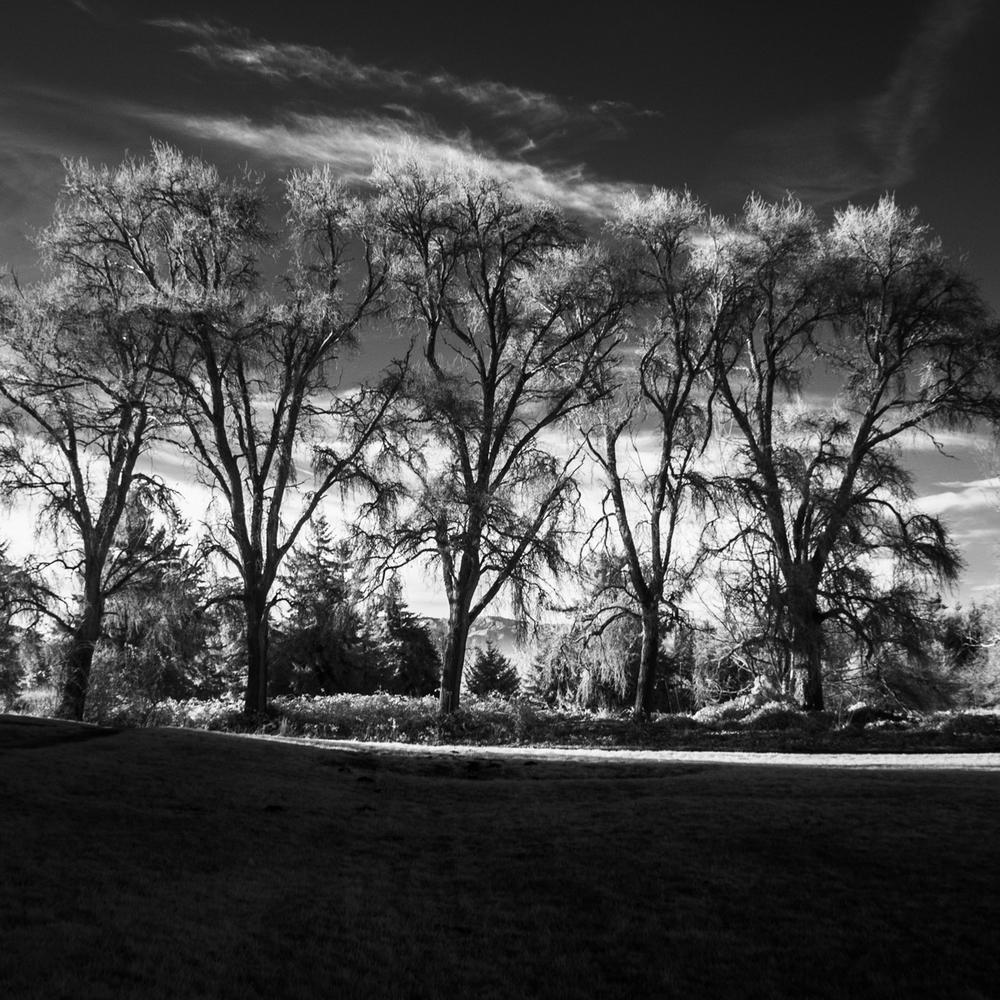 20150114_1141497 © 2014 Erik Hecht.jpg