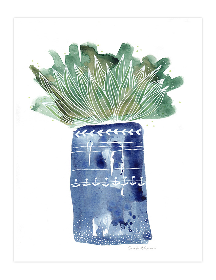 Very Sarie modern cactus illustration