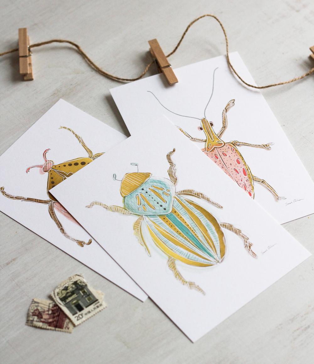 Click to shop beetle postcard set