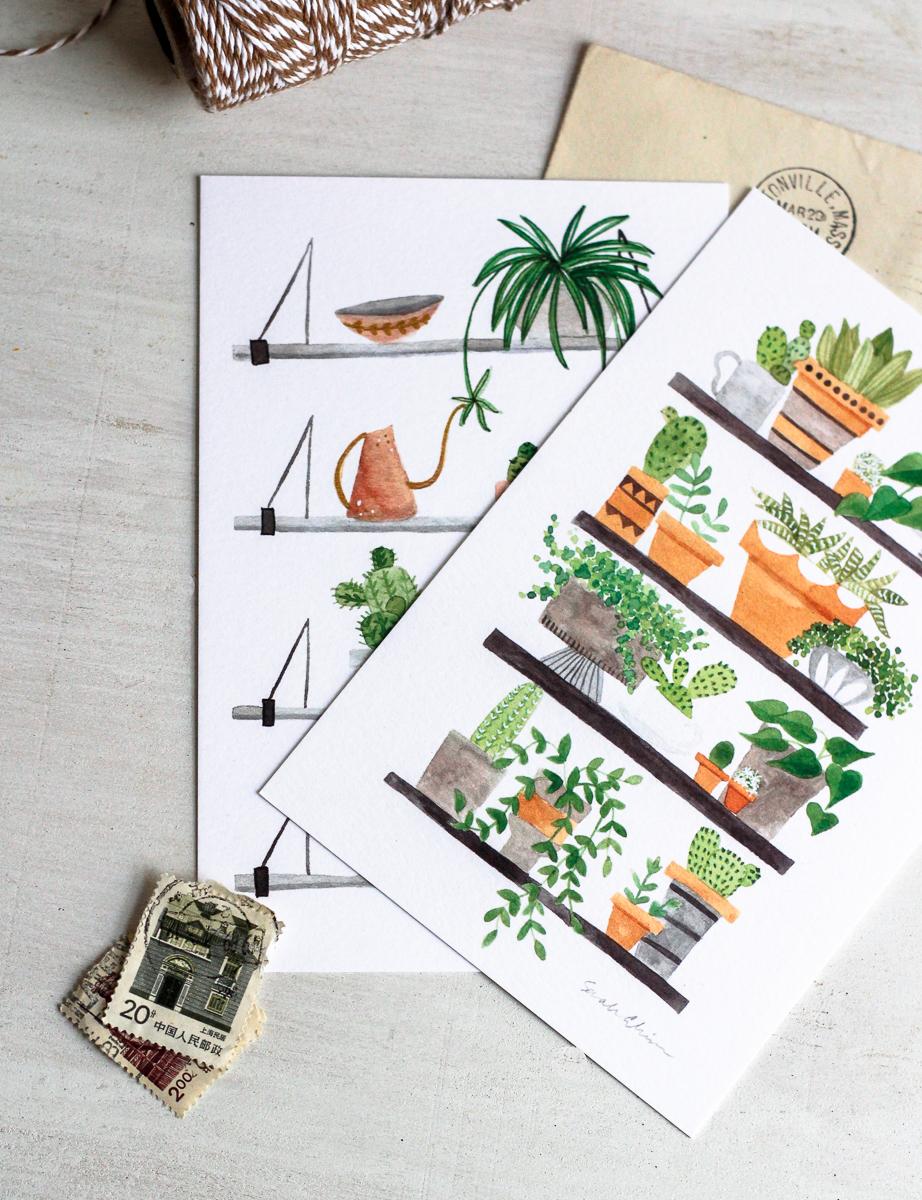 Click to shop plant shelfie postcard set