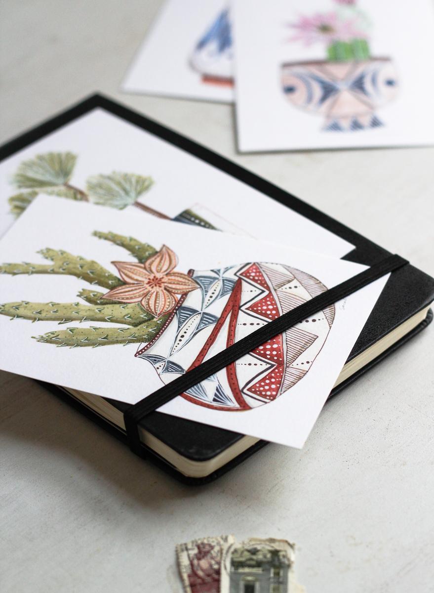 Click to shop succulents postcard set